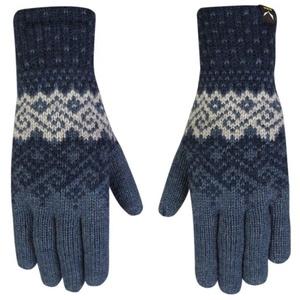 Handschuhe Salewa Fanes WO GLOVES 25366-8961, Salewa