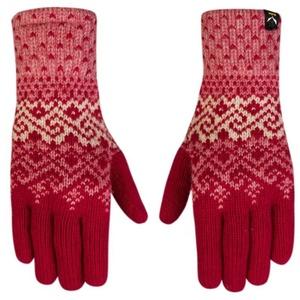 Handschuhe Salewa Fanes WO GLOVES 25366-6331, Salewa