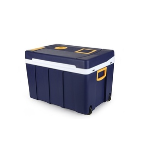 Kühl Box mit heizung Compass 50l 230V/12V roadworthy, Compass