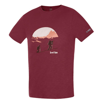 T-Shirt Direct Alpine Bosco Palisander (Auffahrt)