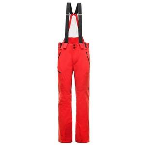 Ski Hose Spyder Men's Bormio GTX 181712-620, Spyder