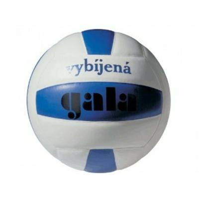 Volleyball Gala mini ausbildung Völkerball, Gala