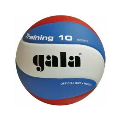 Volleyball Gala Ausbildung 10 platten, Gala