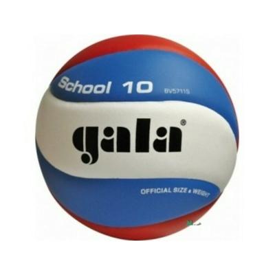 Volleyball Gala Schule 10 platten, Gala